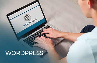 Building eCommerce Business with Wordpress